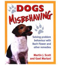 dogs misbehaving