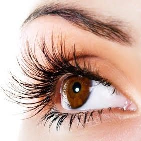 Lash Extension Stock