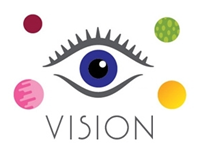 Vision - special offer price