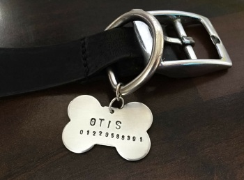 Pet Collar Name Tag