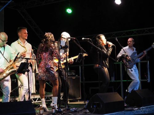 chic tribute band le freak