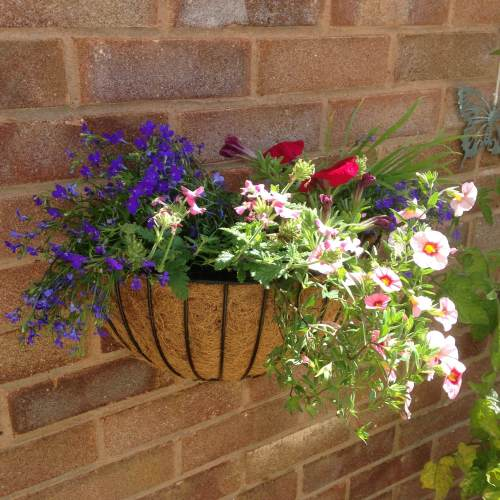 lylia rose garden blog lifestyle wall basket diy flowers 1