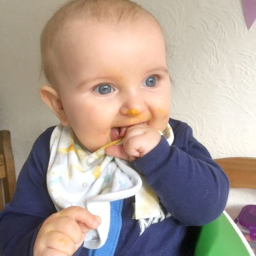 reuben is weaning 5.5 months old - lylia rose family lifestyle blogger