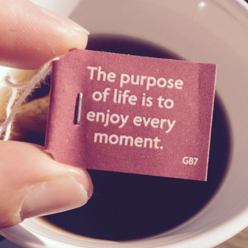yogi tea black chai spiced organic herbal - the purpose of life quote - lyl