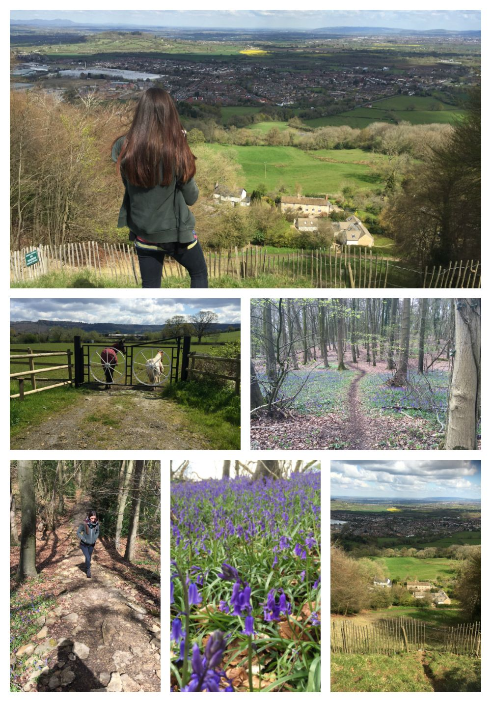 Coopers Hill April 2016 lylia Rose blog brocworth gloucester