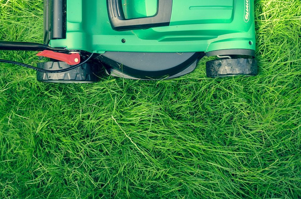The 4 Stages Of Keeping A Clean Home mow the grass