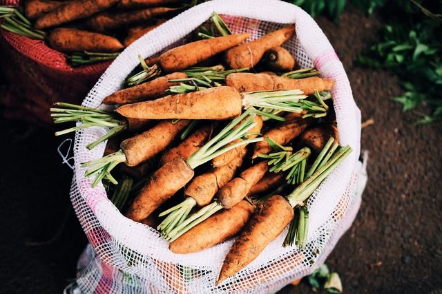 6 Benefits of Allotment Gardening sack of carrots