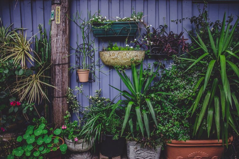 Make your garden perfect in three easy steps