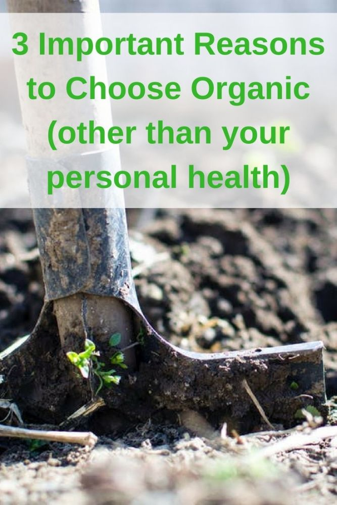 3 Important Reasons to Choose Organic (other than your personal health) pin