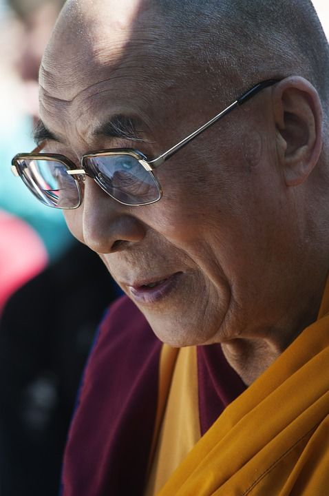 Dalai Lama - I Feel With My Little Heart Something Beginning With E Emotion