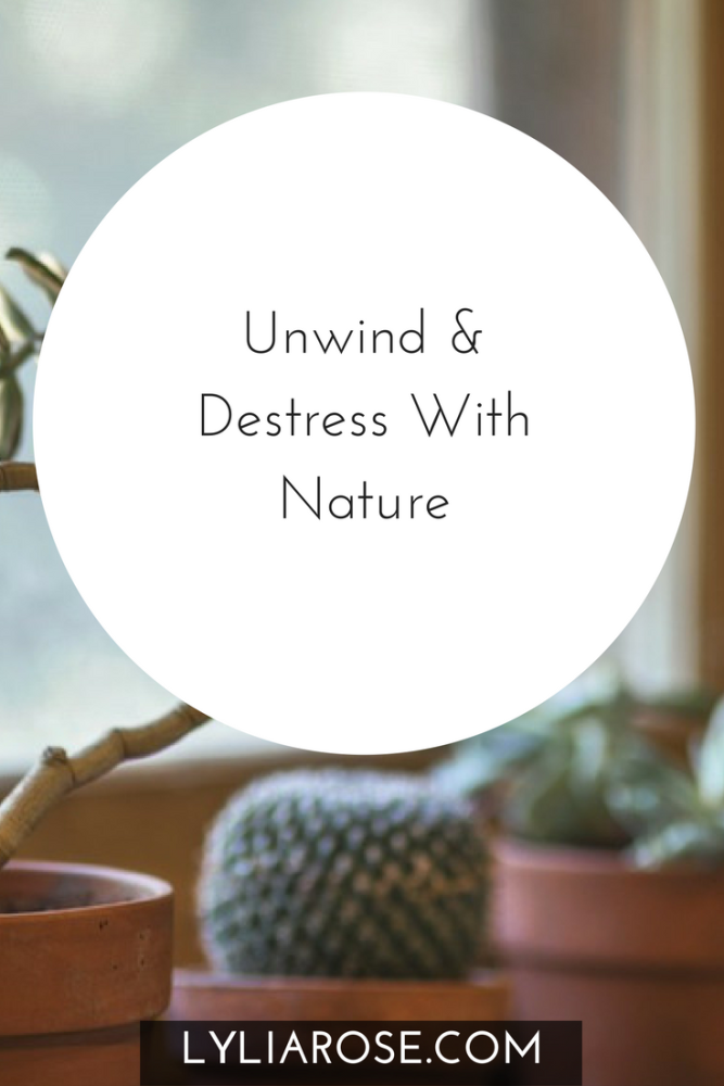 Unwind & Destress With Nature