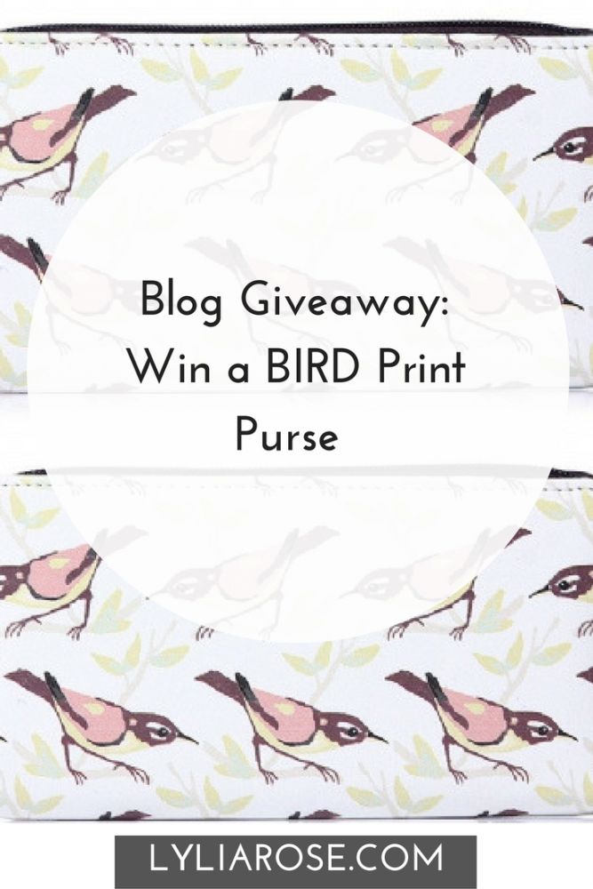 Blog Giveaway- Win a BIRD Print Purse #winitwednesday