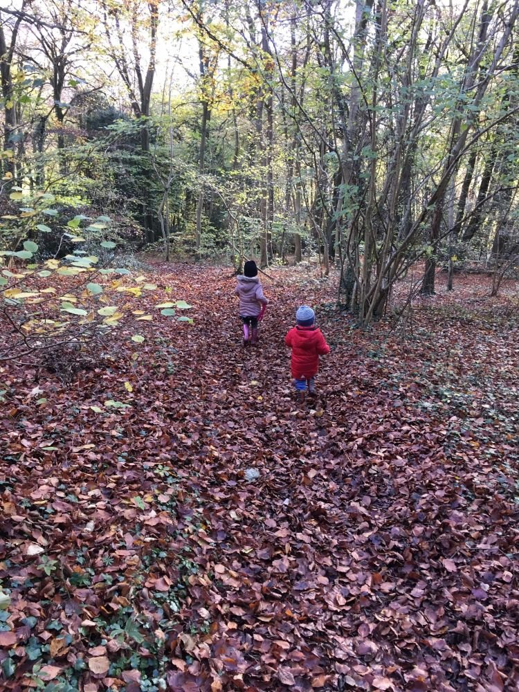 Monthly Family Roundup What we got up to in November 2017 (2)