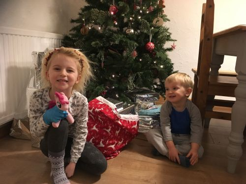 Monthly Family Roundup December 2017 (7)