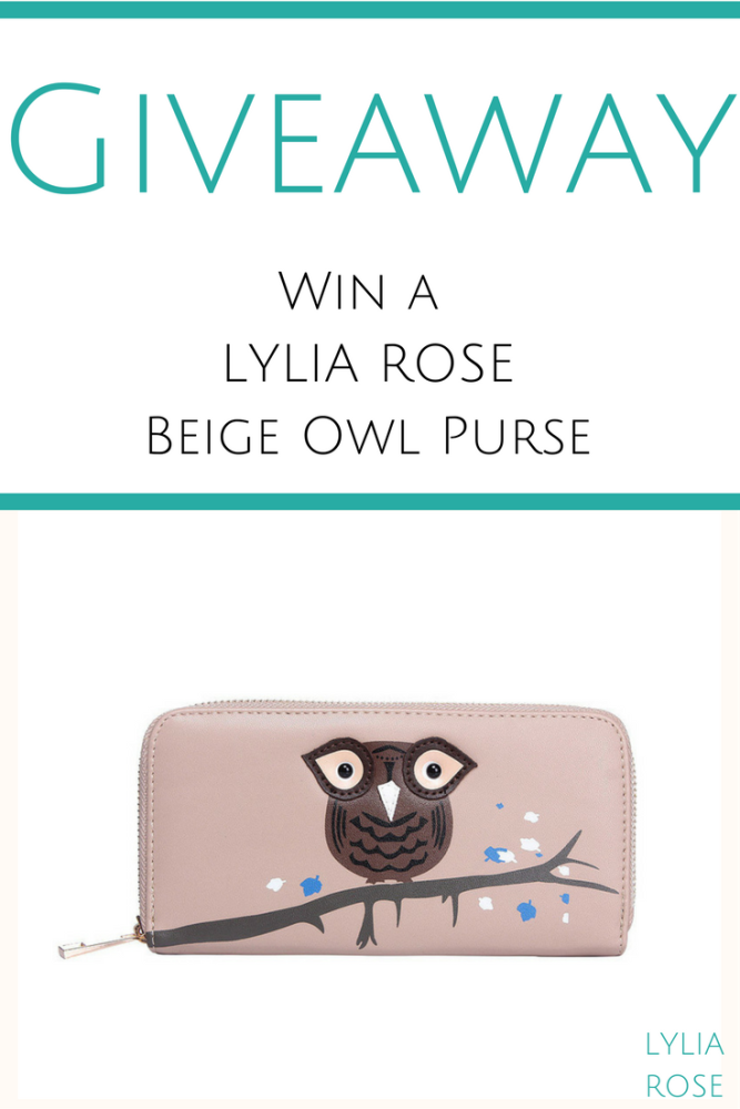 BLOG GIVEAWAY WIN A beige owl purse from Lylia Rose