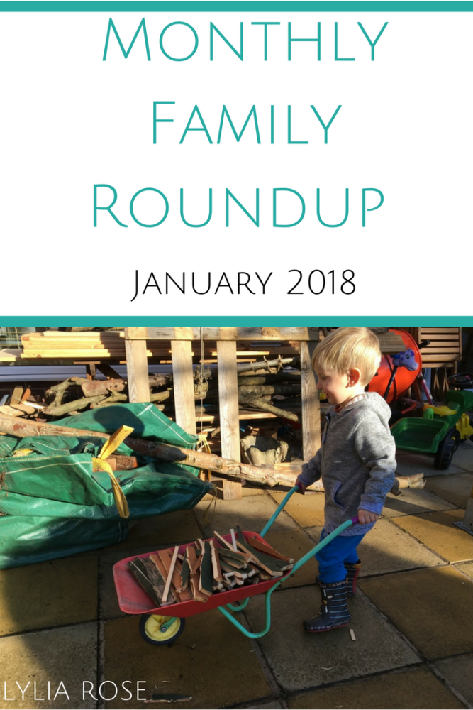 Monthly Family Roundup january 2018 Lylia Rose