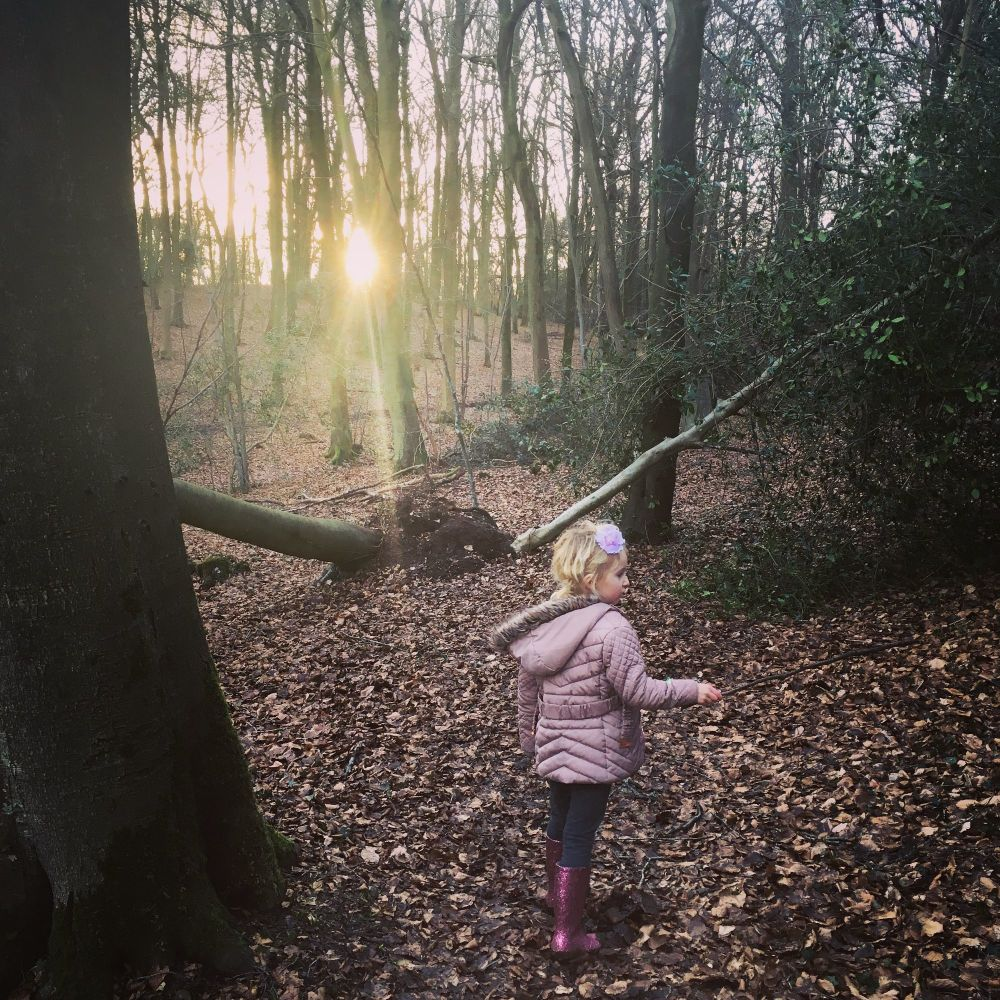 Monthly Family Roundup February 2018 (8)