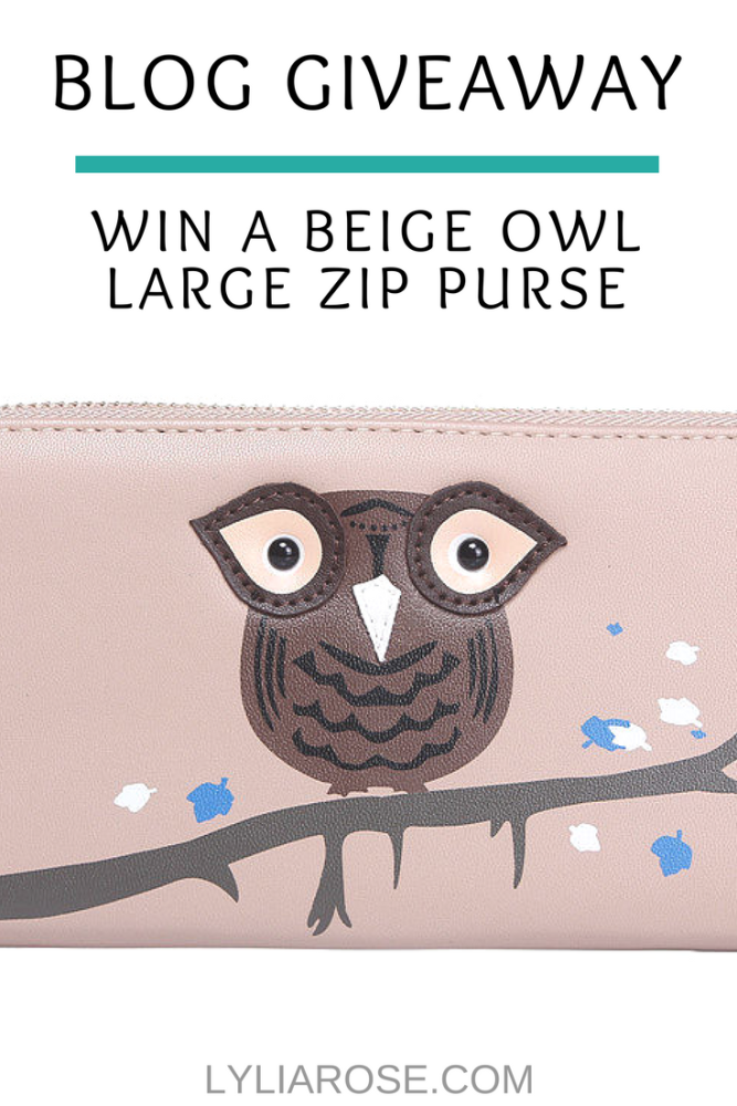 Blog Giveaway_ Win a Beige Owl Applique Large Zip Purse