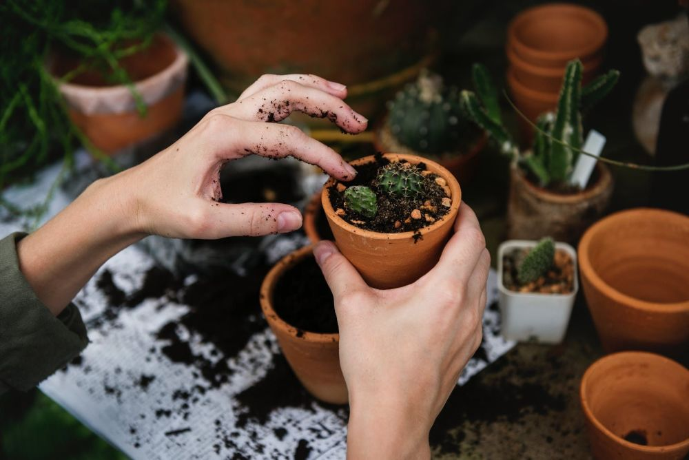 Technology every gardener must own