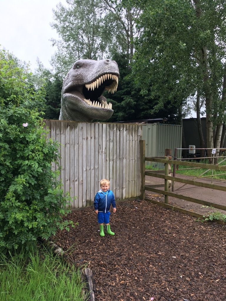 All Things Wild Nature Centre Review – Family Days Out in the West Midlands
