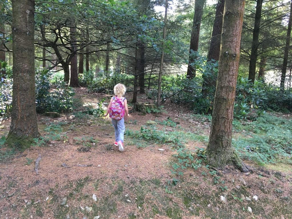 7 free things to do with kids at Center Parcs Longleat - forest walks