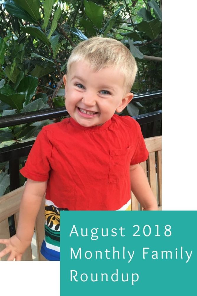 August 2018 Monthly Family Roundup