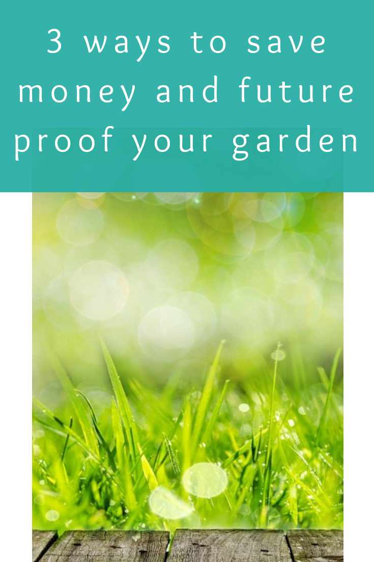 3 ways to save money and future proof your garden