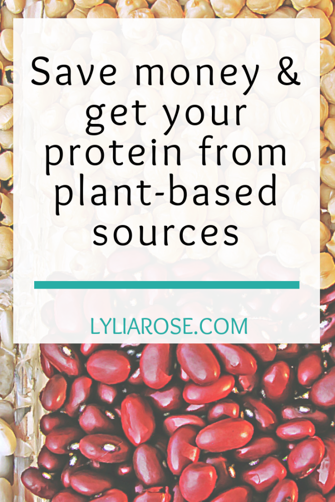 Save money by getting your protein from plant-based sources