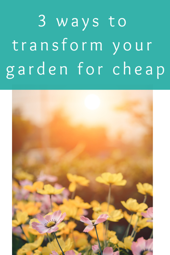 3 ways to transform your garden for cheap