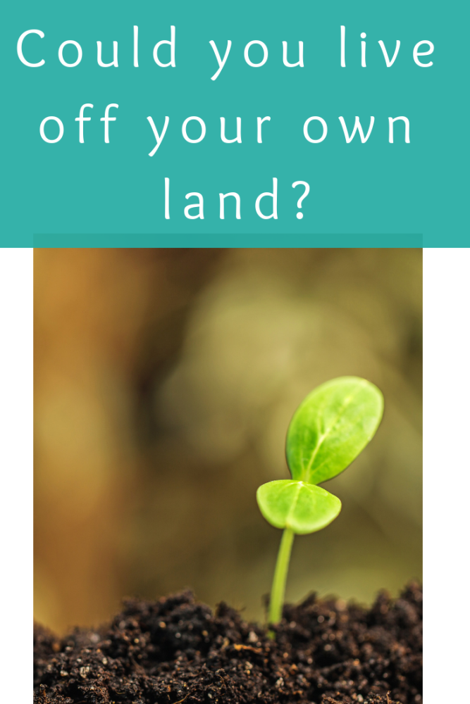 Could you live off your own land_
