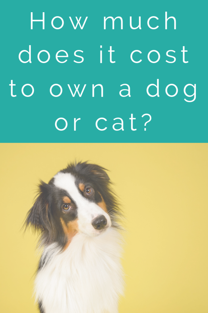 How much does it cost to own a dog or cat_ (1)