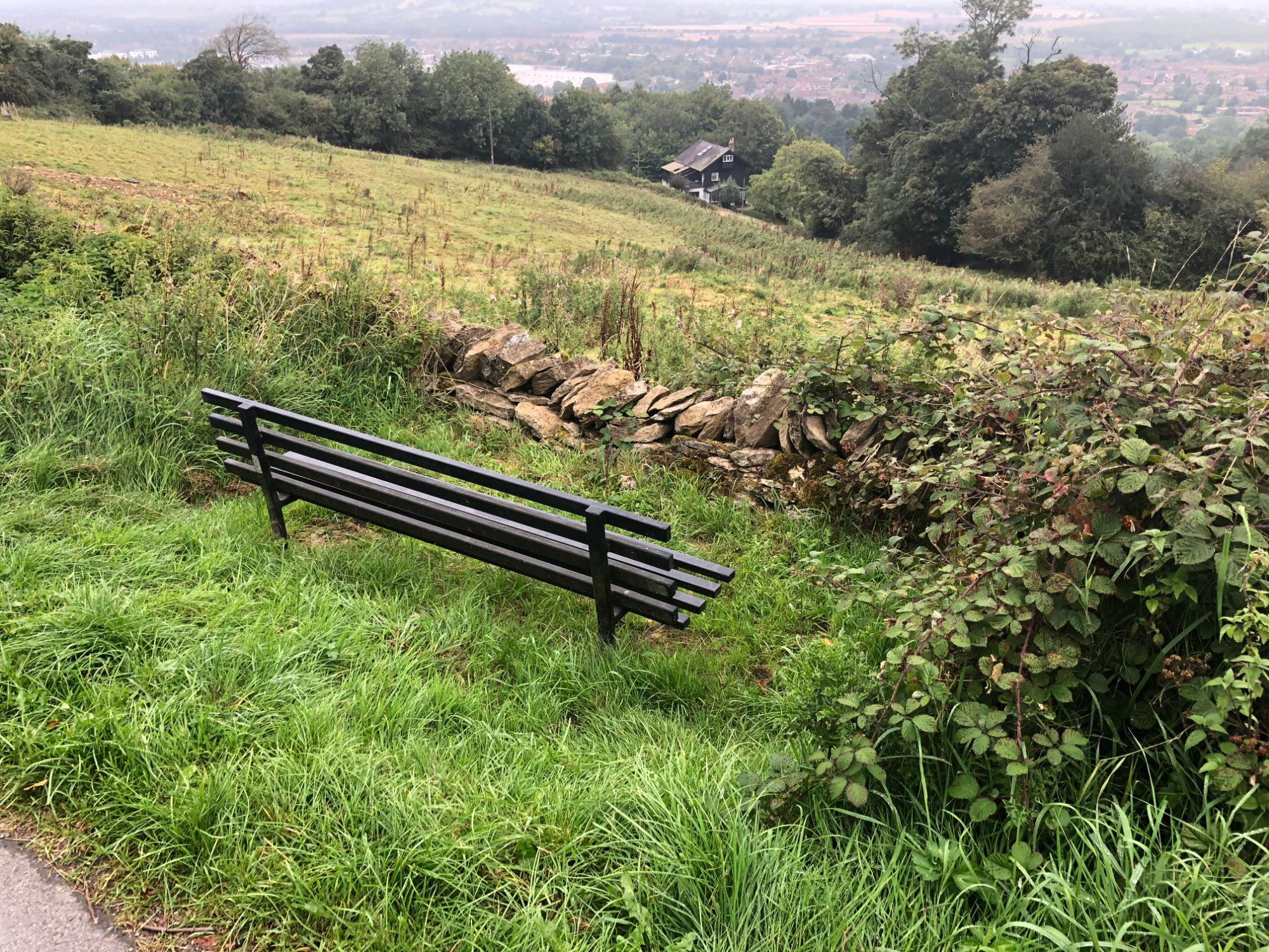 free stock image photo bench view landscape