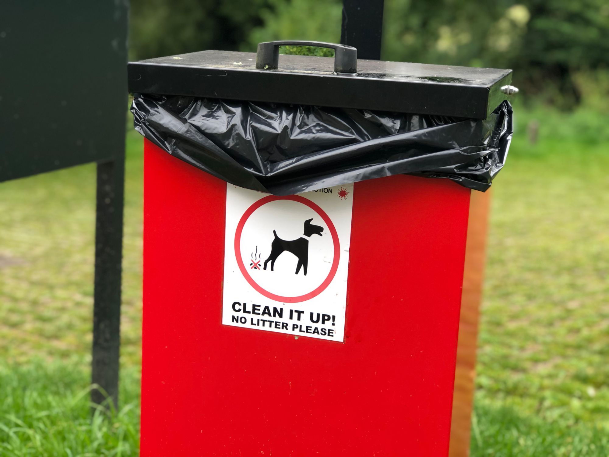 free stock image photo clean it up no litter please dog poo