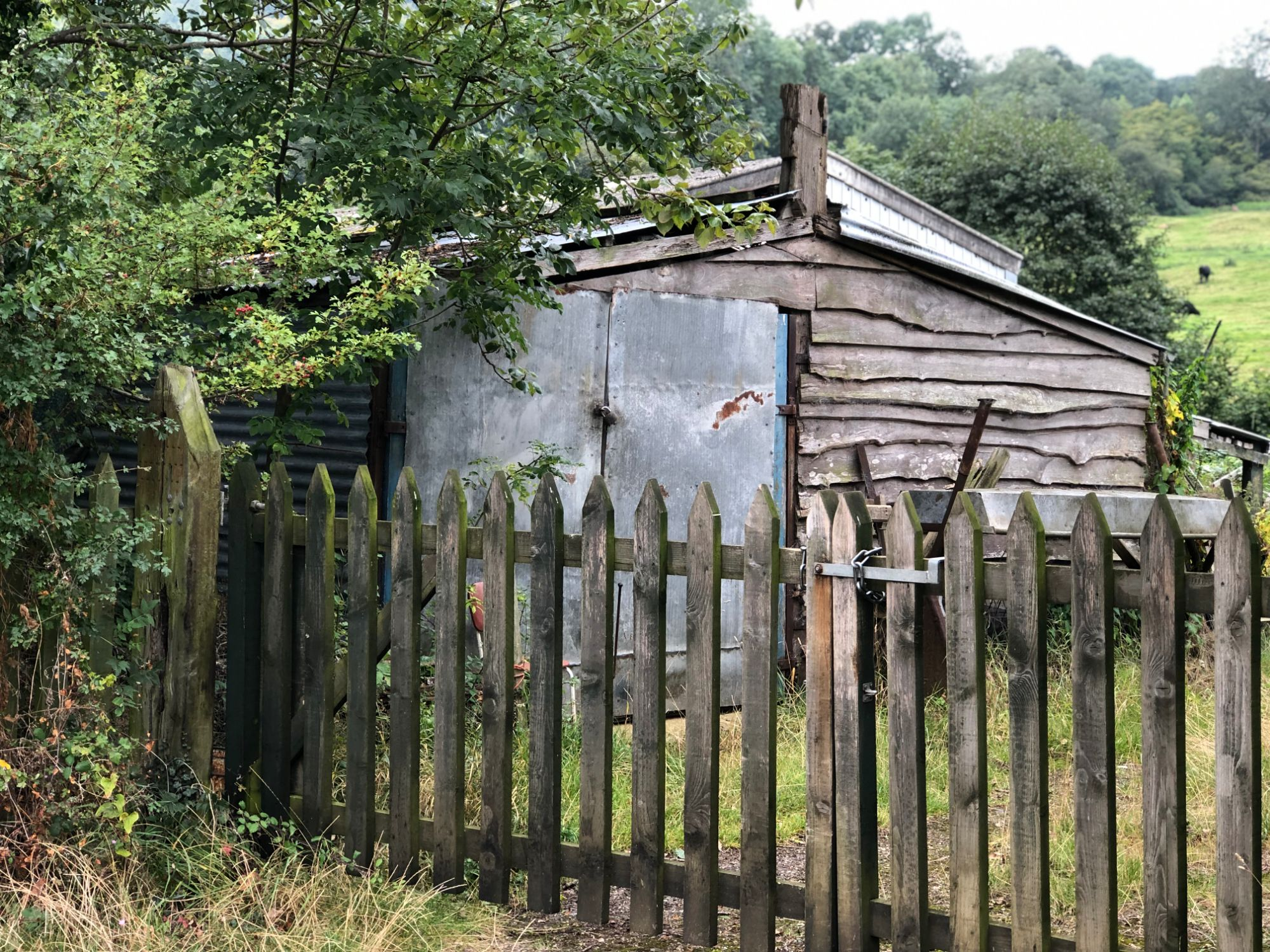 free stock image photo old shed wooden