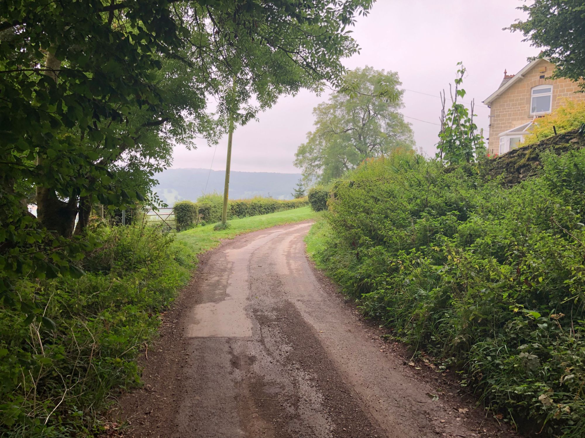 free stock image photo country lane