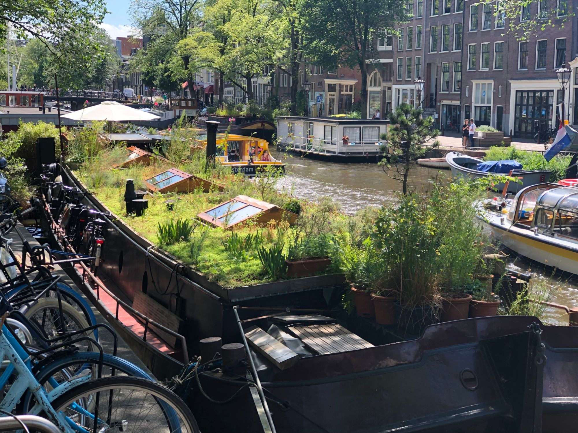 Free stock photo Amsterdam city canal house boat garden