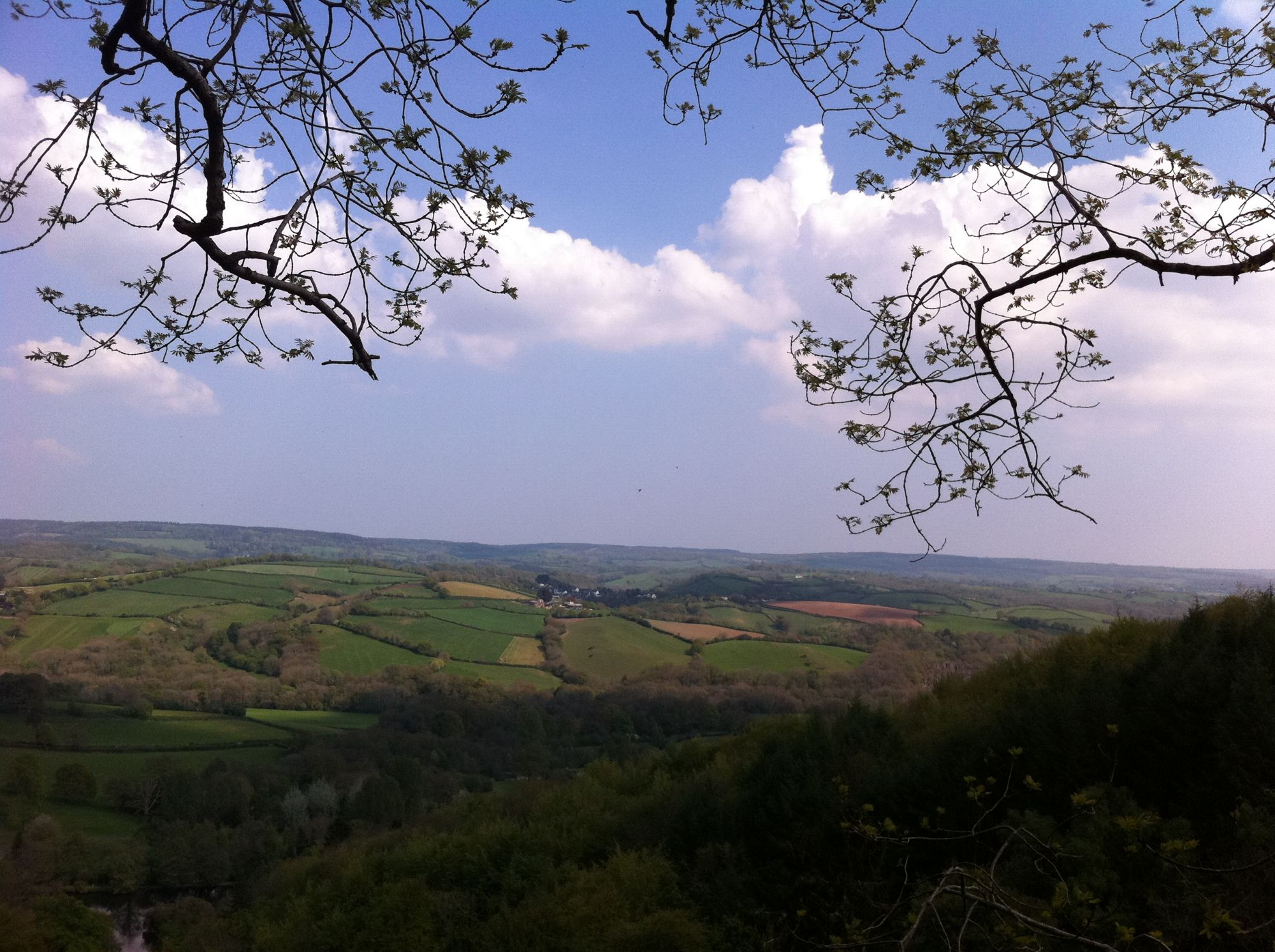 free stock photo British Countryside views landscape green fields