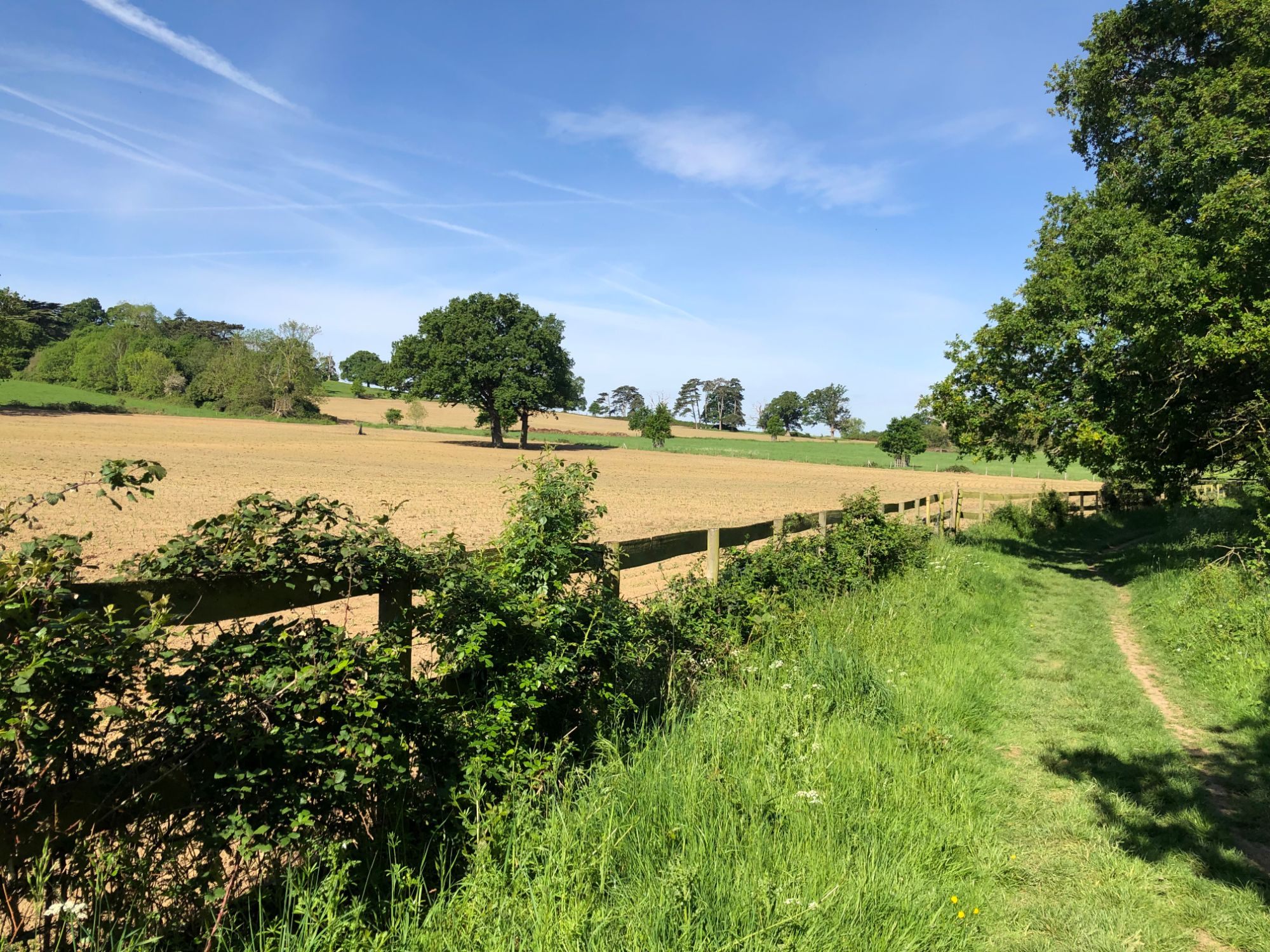 Free stock photo British farmers field peaceful nature country public footpath summer sunny
