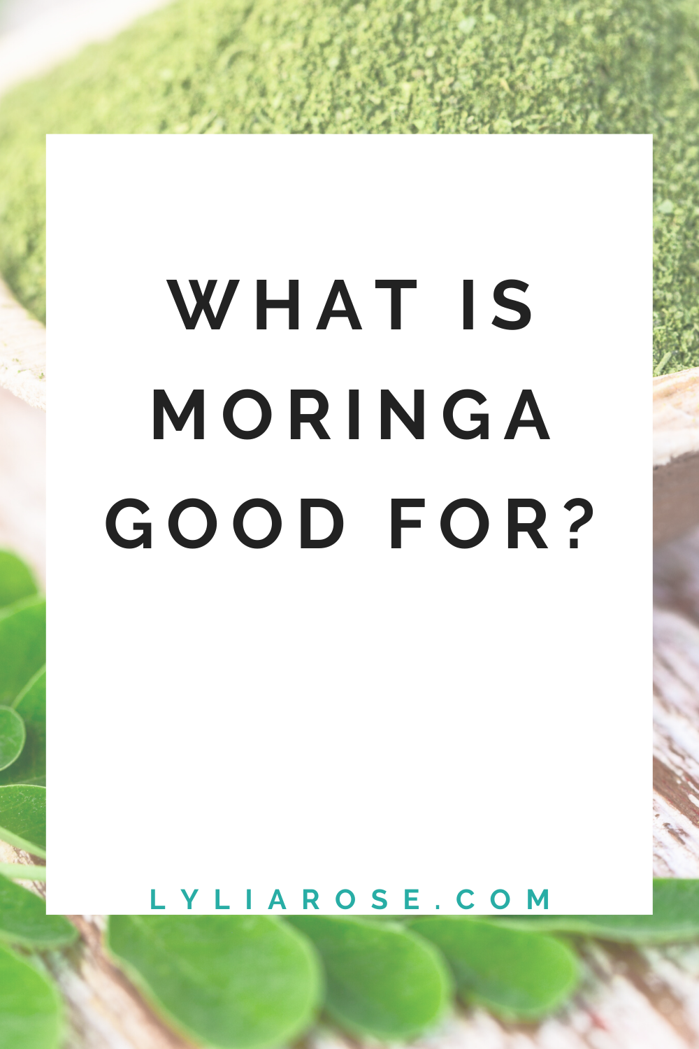 What is moringa good for_