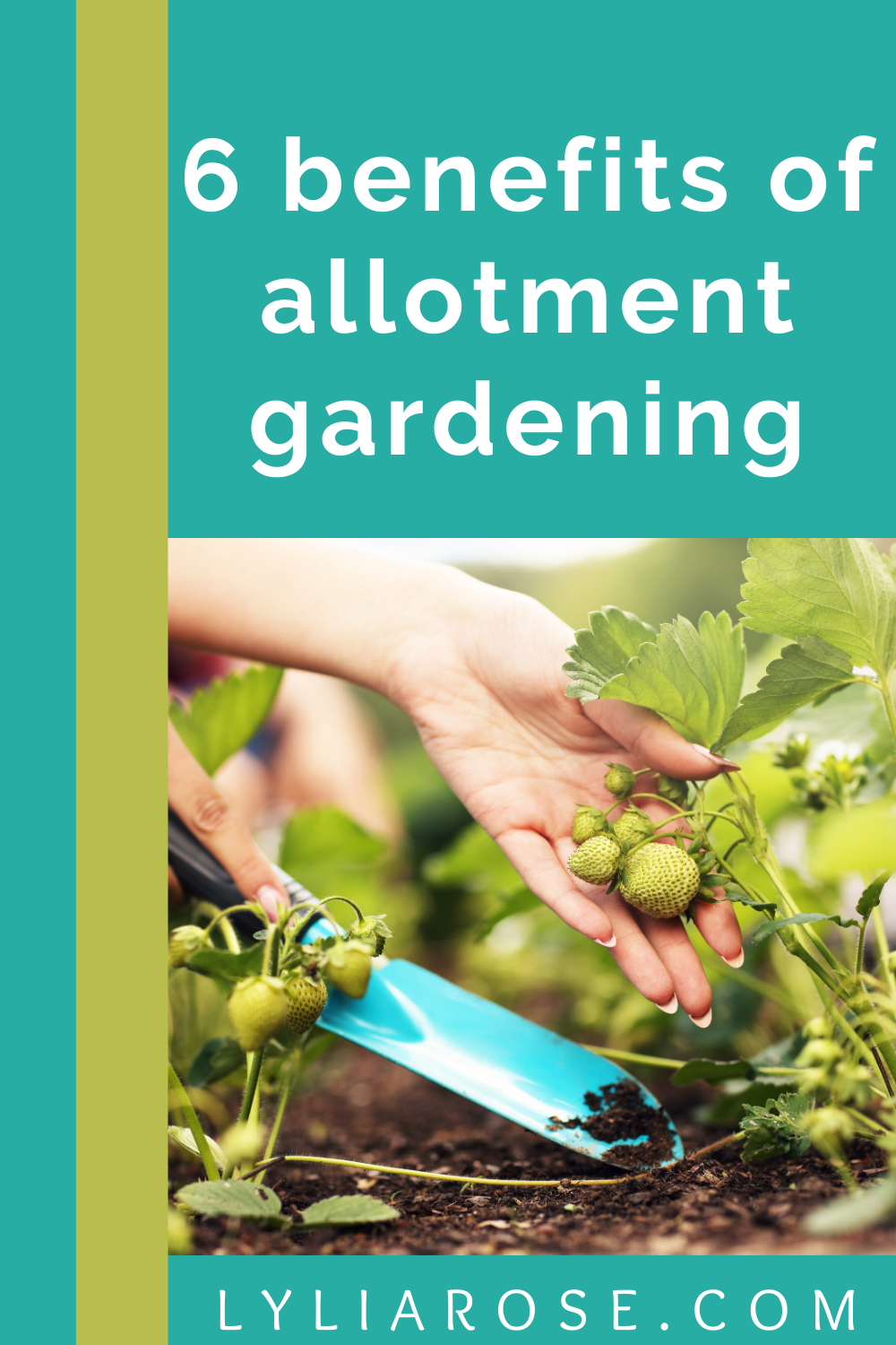6 benefits of allotment gardening (1)
