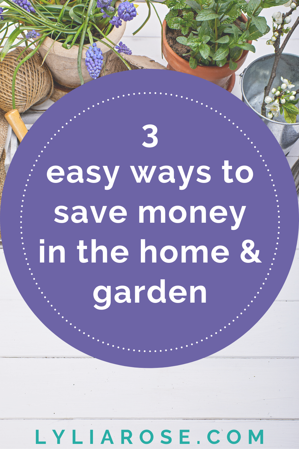 3 easy ways to save money in the home & garden