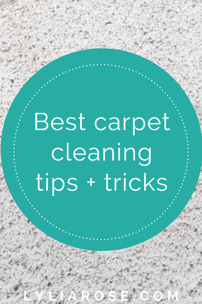 The best carpet cleaning tips + tricks (2)