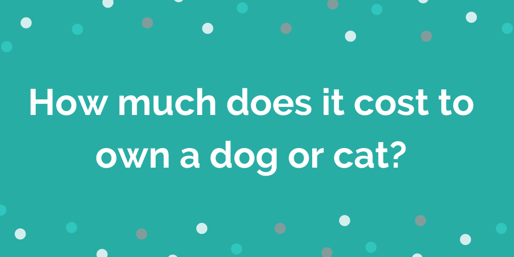 How much does it cost to own a dog or cat_