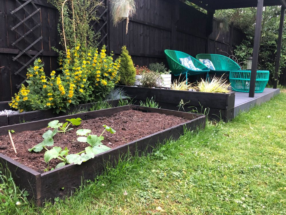 how to transform a garden on a budget
