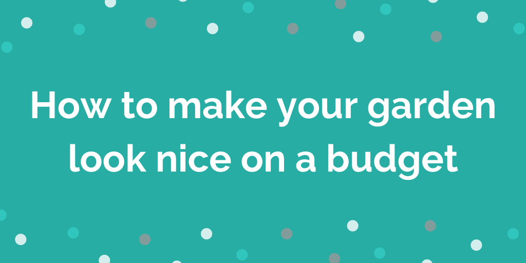 How to make your garden look nice on a budget