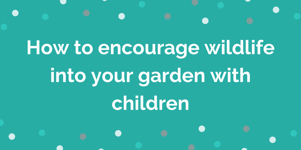 How to encourage wildlife into your garden with children