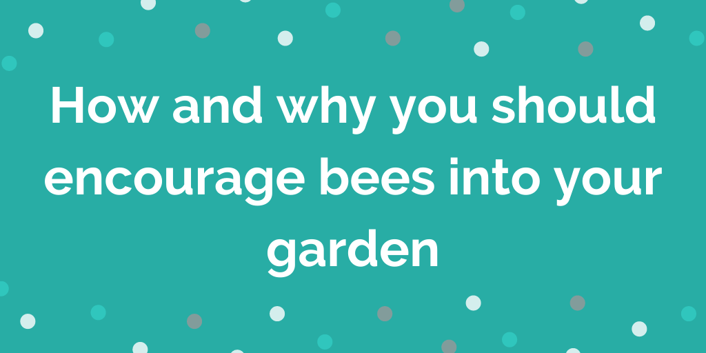 How and why you should encourage bees into your garden