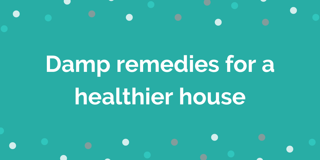 Damp remedies for a healthier house