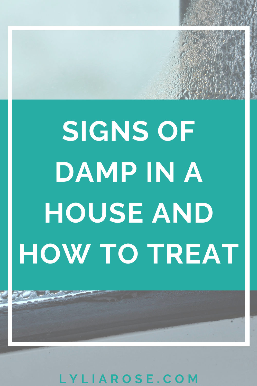 Signs of damp in a house and how to treat