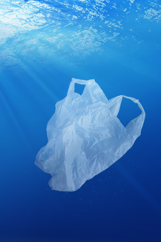 The Better Planet Project by BetterYou launches Plastic Petition (1)
